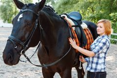 Girl standing near the horse. My beloved. Positive girl taking care of the horse and enjoying animal while standing nearby stock photos