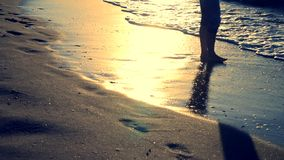 The girl is standing near the sea and waves roll her on her feet in the morning stock video