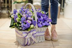 Girl standing near to a beautiful basket of violet spring flowers Royalty Free Stock Photography