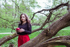 Girl standing near a tree trunk. Girl in a red skirt standing near a tree trunk with apple in hand Royalty Free Stock Images