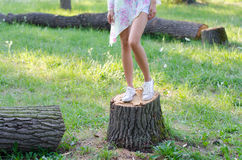Girl standing on stump of cut down tree in the forest sunny day Stock Image
