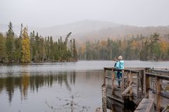 Woman taking smartphone photo of foggy landscape in Autumn. Girl standing on wood pier taking cellphone photo of landscape in Ontario, Canada royalty free stock photo