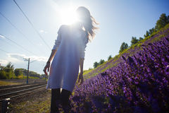 Girl stands near the meadows with flowers Stock Photos