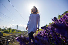 Girl stands near the meadows with flowers Stock Images