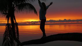 A girl stands on a palm tree on a background of red sunset on the seashore stock footage
