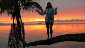 A girl stands on a palm tree on a background of red sunset on the seashore stock video footage