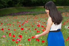 Girl stands in poppy field Stock Image