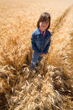 Girl stands in wheat field. Stock Photography