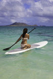 Girl on a standup paddle board Royalty Free Stock Image