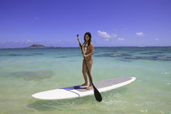 Girl on a standup paddle board Stock Images