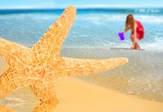 Girl and Starfiish by Sea Stock Photos