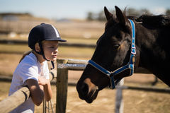 Girl staring at the brown horse in the ranch. On a sunny day Royalty Free Stock Images