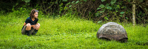 Girl staring intently at Galapagos giant tortoise Stock Photos