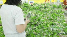 The girl in the store chooses and buys Lettuce seed. A large pile of green lettuce.  stock video