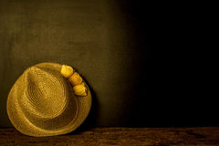 Girl straw hat on dark background Royalty Free Stock Photos