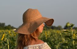 The girl in the straw hat in profile on the field with sunflowers. royalty free stock images