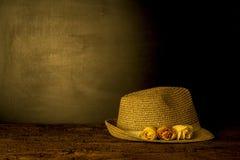 Girl straw hat spring card Royalty Free Stock Photos