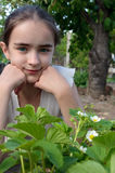 Girl and strawberry bush at garden Stock Image