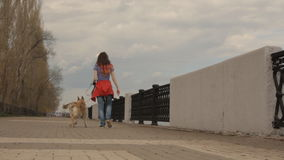 A girl with streaming hair walking a dog. stock footage
