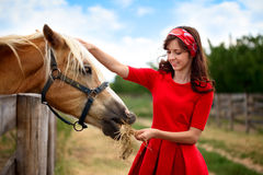 Girl stroked  her horse Royalty Free Stock Photo