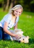 Girl strokes golden retriever Stock Photos