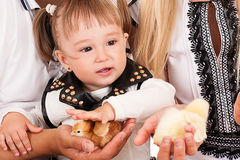 Girl stroking a chicken Royalty Free Stock Photo