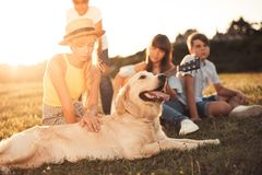 Teenagers with dog in park Royalty Free Stock Images