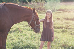 Girl stroking her horse and looking at the camera. On the sunlit field Royalty Free Stock Photo