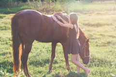 Girl stroking her horse and looking at the camera. On the sunlit field Royalty Free Stock Photography