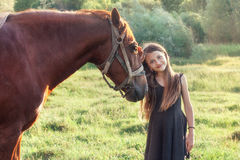 Girl stroking her horse and looking at the camera. On the sunlit field Stock Images