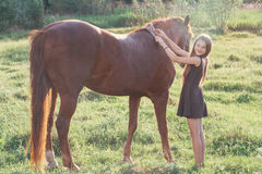 Girl stroking her horse and looking at the camera. On the sunlit field Stock Photo
