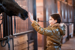 Girl stroking horse. Teenage girl stroking horse while it pokes its head through the bars of its stable Royalty Free Stock Photo