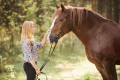 A girl stroking a horse in an autumn forest stock photography