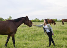 The girl is stroking the horse. Girl with horses in the pasture. The girl is stroking the horse. Girl with horses in the pasture Royalty Free Stock Photos