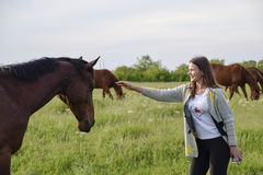 The girl is stroking the horse. Girl with horses in the pasture. The girl is stroking the horse. Girl with horses in the pasture Royalty Free Stock Photo