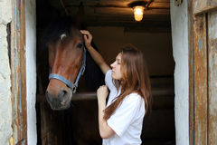 Girl stroking horse. Yang girl stroking brown  horse in the stall Stock Image
