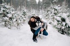 Girl stroking Husky dog royalty free stock images