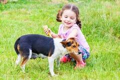 Girl stroking s mongrel dog outdoorss. Happy little girl stroking s mongrel dog outdoors Stock Photos