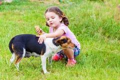 Girl stroking s mongrel dog outdoorss. Happy little girl stroking s mongrel dog outdoors Royalty Free Stock Photo