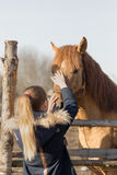 Girl stroking a thoroughbred horse in the pen for paddock Royalty Free Stock Photography