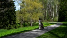 A girl with a stroller walks along the path of the park along the green trees and lawns. Bright sunny day stock video footage