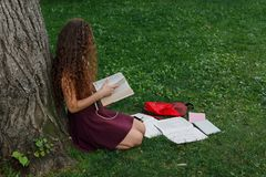 Girl student holding book and sitting under tree Stock Photography