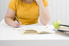 The girl the student with writing-books and books Royalty Free Stock Images
