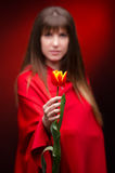 Girl in studio wearing a red cloak with flower in. Defocused girl in studio, on a black background wearing a red cloak, with focused flower in hand royalty free stock images