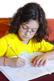 Girl Studying. Concentrated young girl doing her school homework Stock Photos