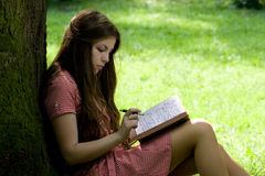 Girl studying in the park. Attractive girl with long hair is studying in the park Stock Photos