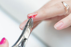 The girl suffered a cut finger on the manicure. Stock Image
