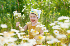 Girl in summer camomile plant Royalty Free Stock Image