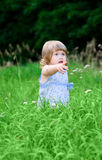 Girl at summer forest Stock Images