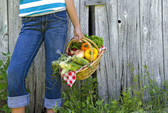 Girl with summer vegetables Royalty Free Stock Photography